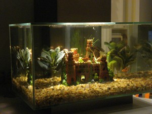 Aquarium Fluval By Fiddledeedee
