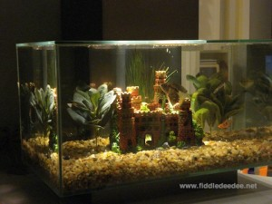 Aquarium by Fiddledeedee.net
